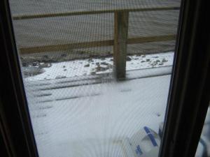 Pauls snowy door