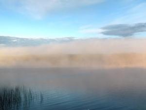 fogburning