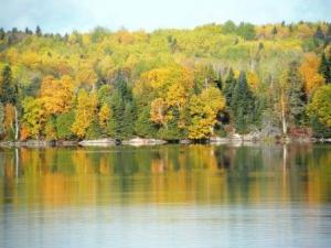 fall lake 3
