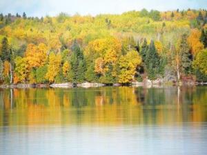 fall lake 4