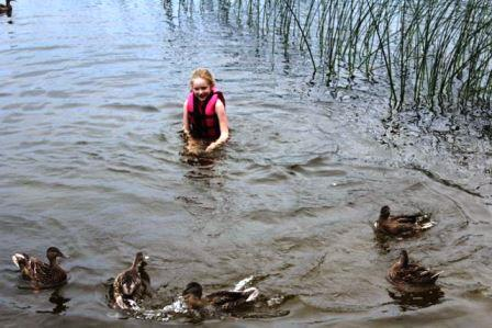 triciaswimmingwithducks
