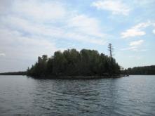 treetrimming2