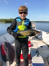 Finn walleye